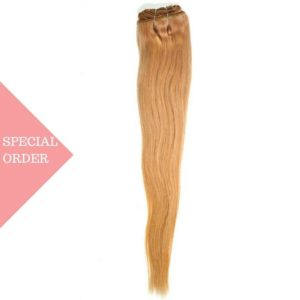 #27 Honey Blonde Clip-In Extensions